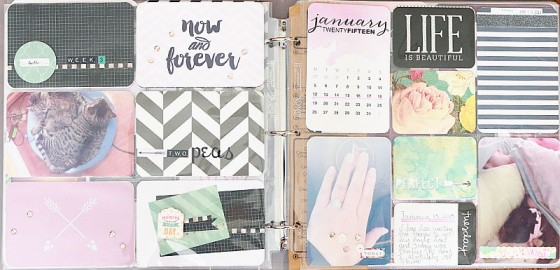 project-life-2015-week-3-layout