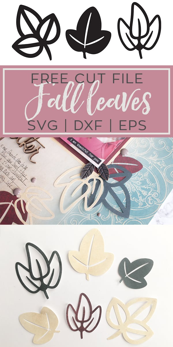 Free Fall Leaves SVG DXF EPS PNG JPG Cut File for Silhouette and Cricut
